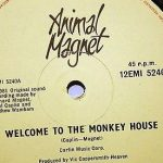 animal-magnet-welcome-to-the-monkey-house-1981-emi-records-12-single-dance_4054750 copy